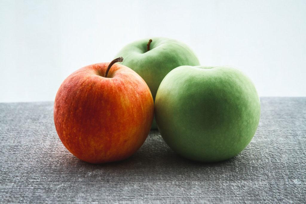 Wühlmaus Köder Apfel